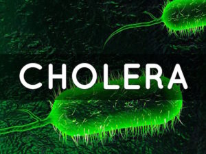 U.S. Approves First Vaccine for Cholera