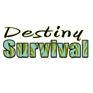Destiny Survival web page logo